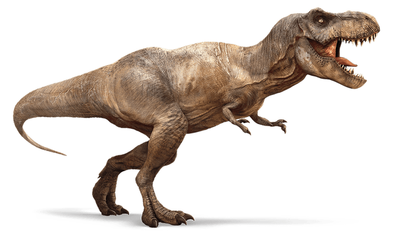 Top-15-Popular-Fossil-and-Dinosaur-Pokemons-That-You-Will-Like-T-Rex
