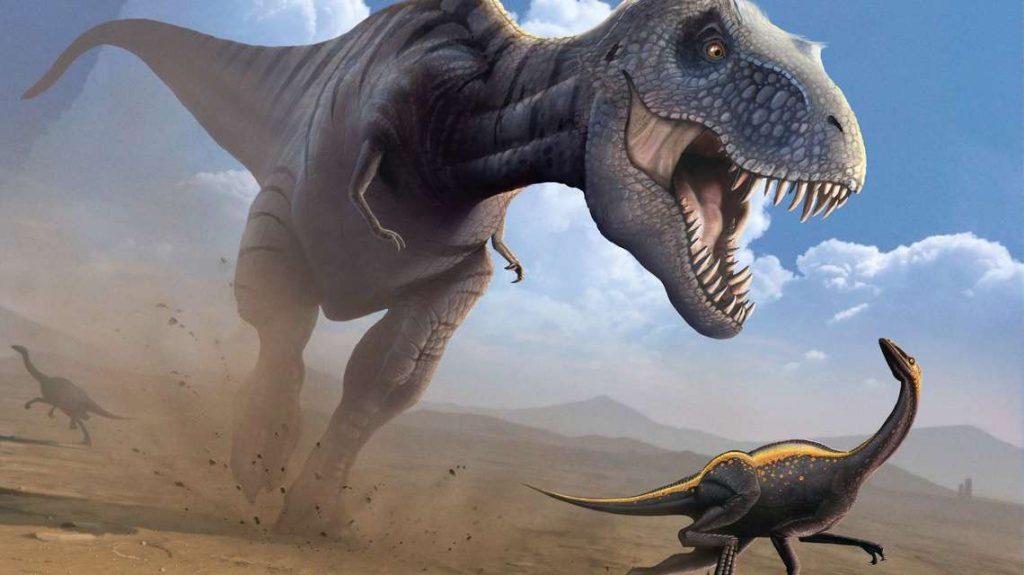 Tyrannosaurus Rex Is Hunting Herbivores