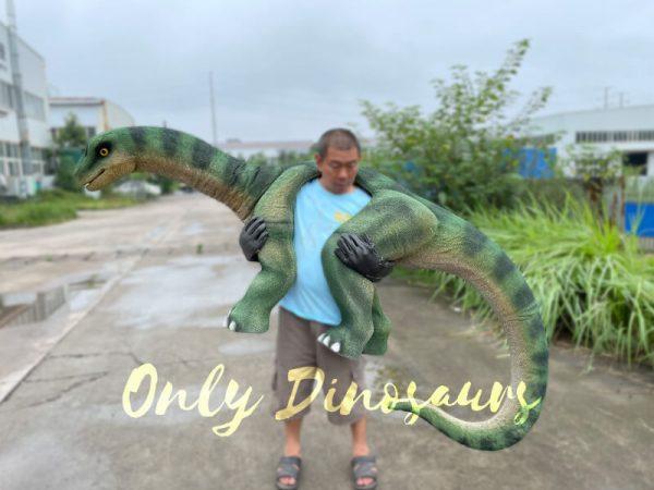 Vivid-Brontosaurus-Dino-Shoulder-Puppet6
