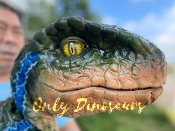 Vivid-Hand-Velociraptor-Puppet-for-Sale1