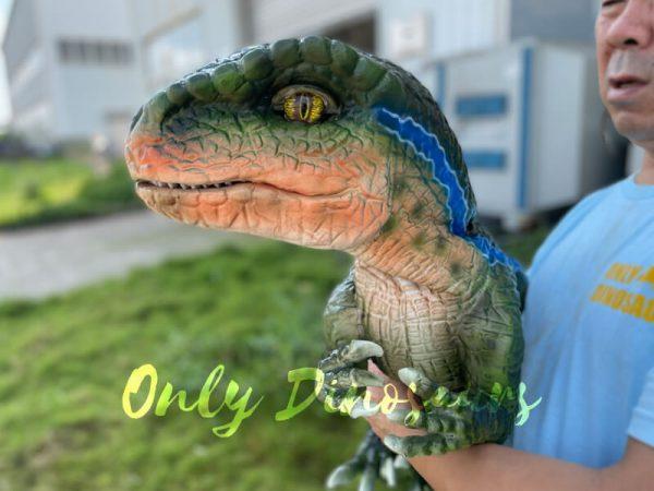 Vivid-Hand-Velociraptor-Puppet-for-Sale2