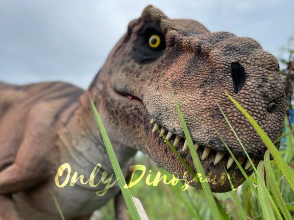 Vivid-T-Rex-Dino-Costume-for-Sale1