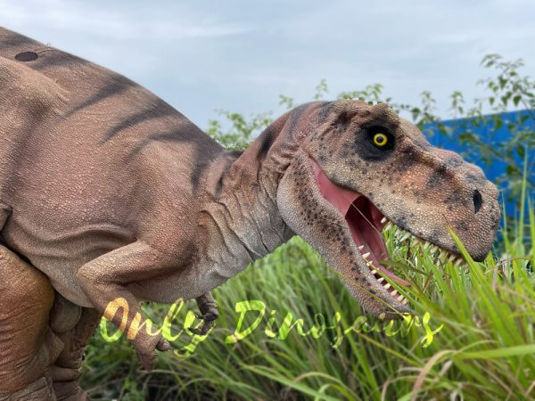 Vivid-T-Rex-Dino-Costume-for-Sale2