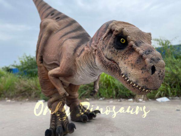 Vivid-T-Rex-Dino-Costume-for-Sale3