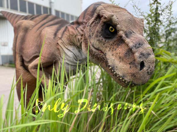 Vivid-T-Rex-Dino-Costume-for-Sale4