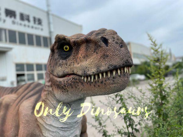 Vivid-T-Rex-Dino-Costume-for-Sale5