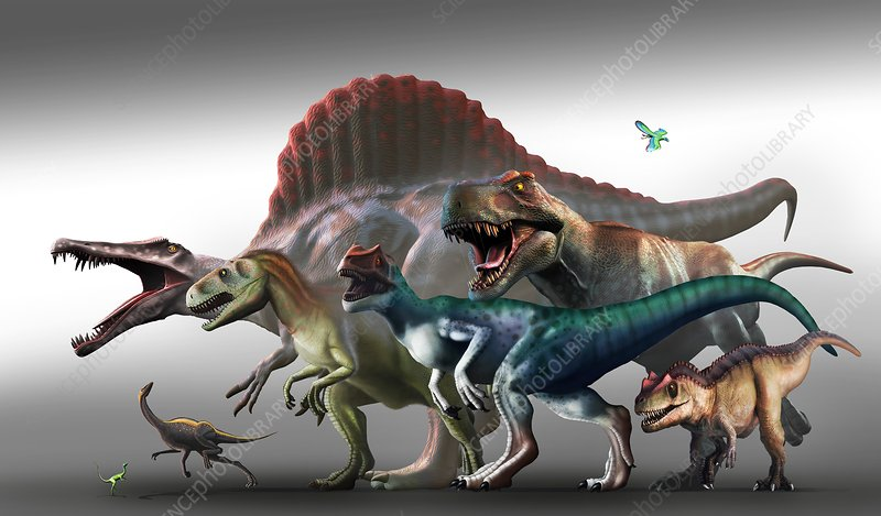 What-Does-Dinosaurs-Eat-Facts-About-Dinosaur-Diet-Carnivorous-Dinosaurs