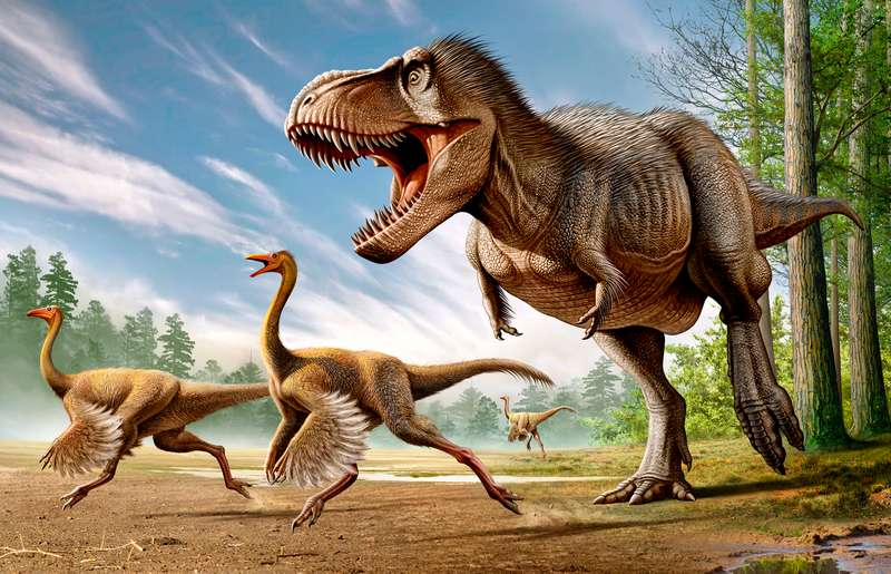 What-Does-Dinosaurs-Eat-Facts-About-Dinosaur-Diet-Feathered-T-Rex-1