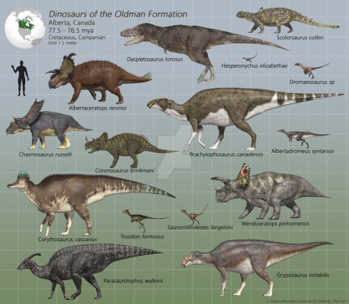 What-Does-Dinosaurs-Eat-Facts-About-Dinosaur-Diet-Omnivores-Dinosaurs