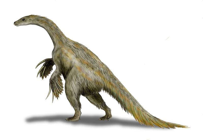 a feathered brown dinosaur with sloth-like claws