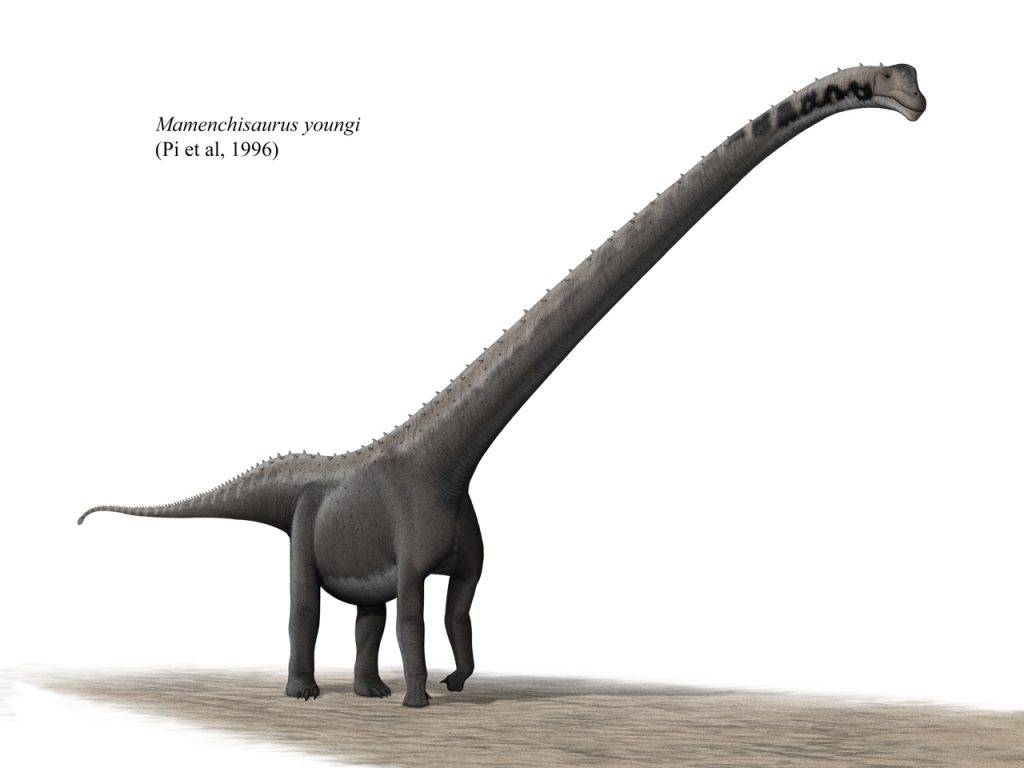a long-neck gray illustrated dinosaur with a short body