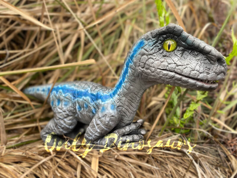 blue-gray baby velociraptor puppet on brown plants