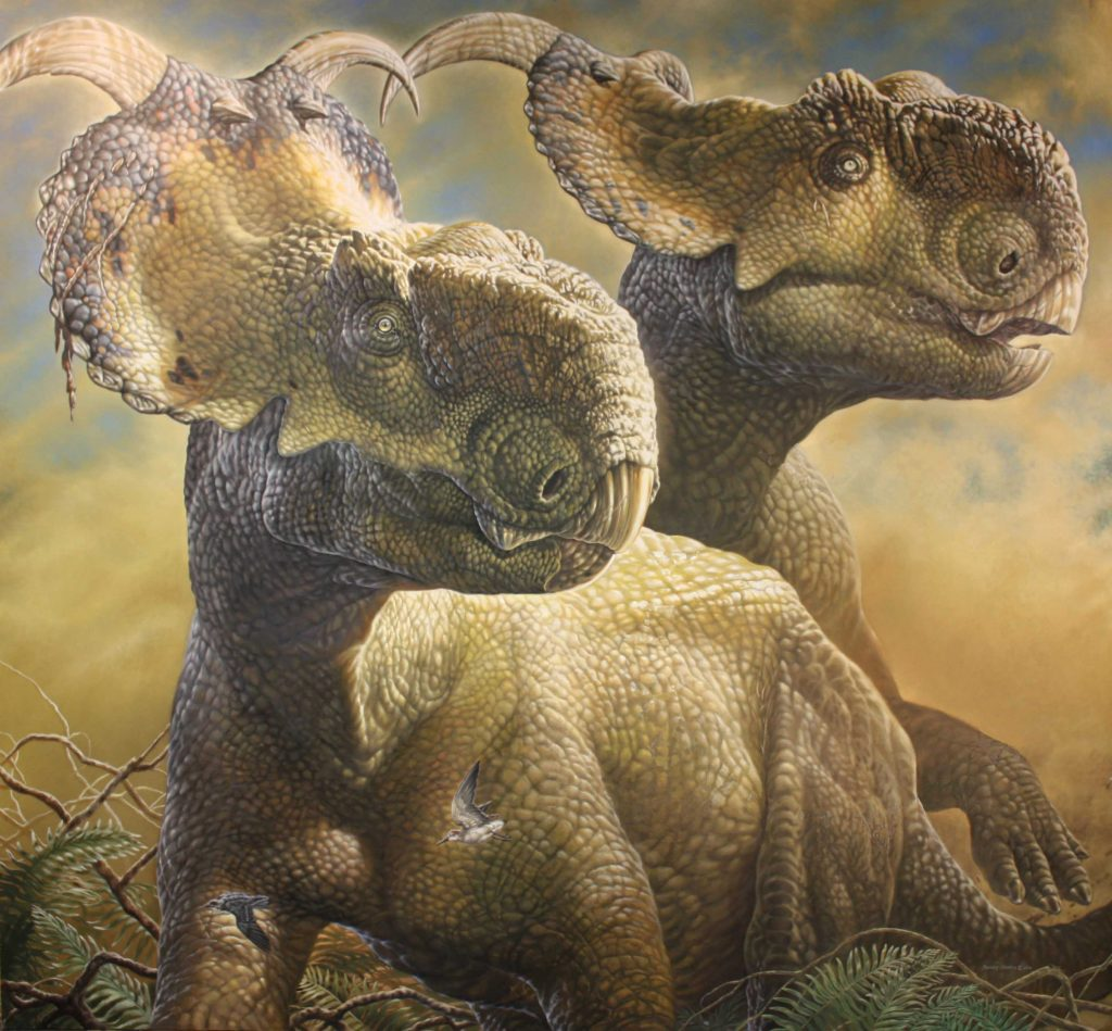 illustration of two brown horned dinosaurs sitting on grass