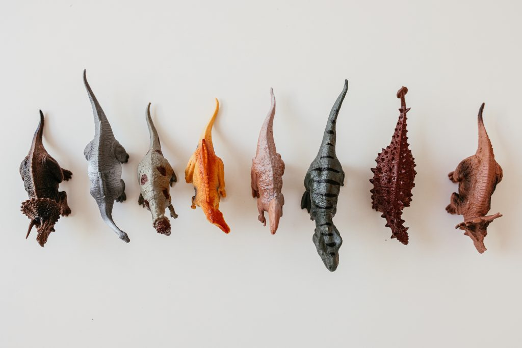 plastic toy dinosaurs lined up on a white background