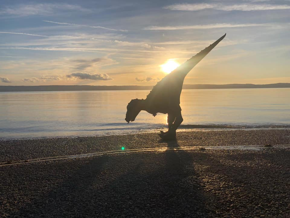A Dinosaur Playing on the Beach with a Sunset Background