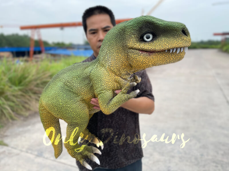 Adorable T-Rex Hand Puppet for Party6