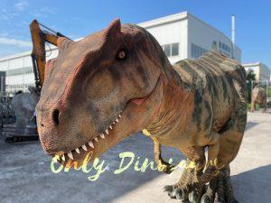 Adult Lifelike Walking Allosaurus Dinosaur Costume