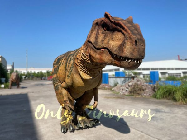 The Front of a Brown Allosaurus with Black Stripes