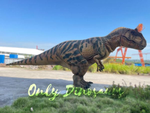 A Brown Allosaurus with Black Stripes on the Ground