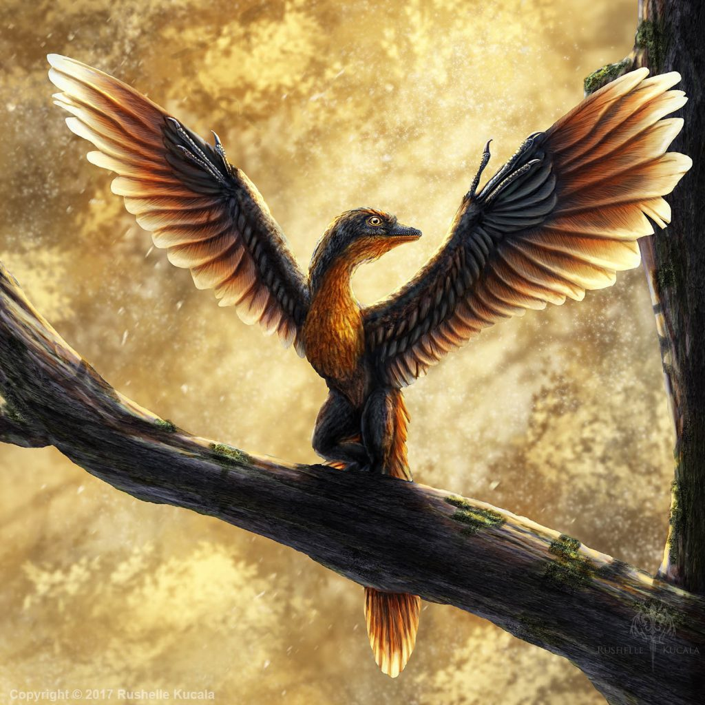 Archaeopteryx on the Tree with a Beautiful Background