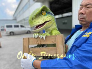 Blissful Crate Raptor Dino Puppet