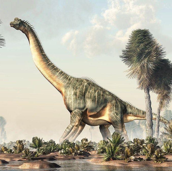 Brachiosaurus on the Ground