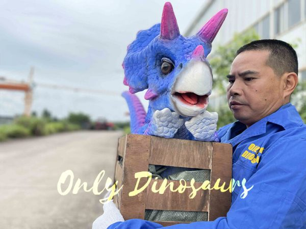 Triceratops Crate Puppet