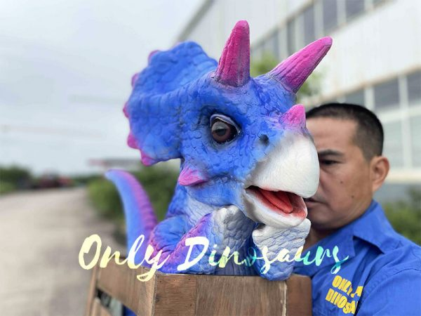 Bright Blue Crate Triceratops