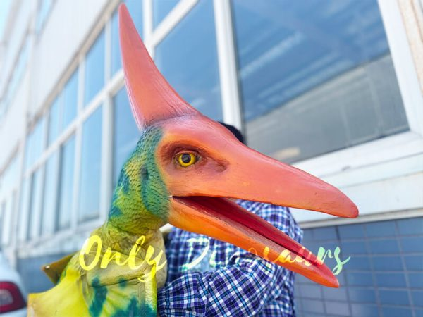 A Green Baby Pterosaur with Red Crown Head