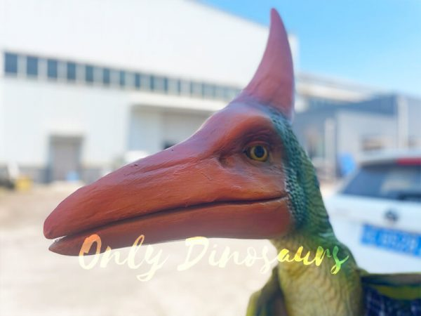 The Head of a Green Baby Pterosaur with Red Crown