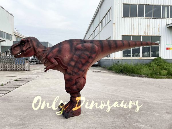 The Side of a Dark Red T-Rex