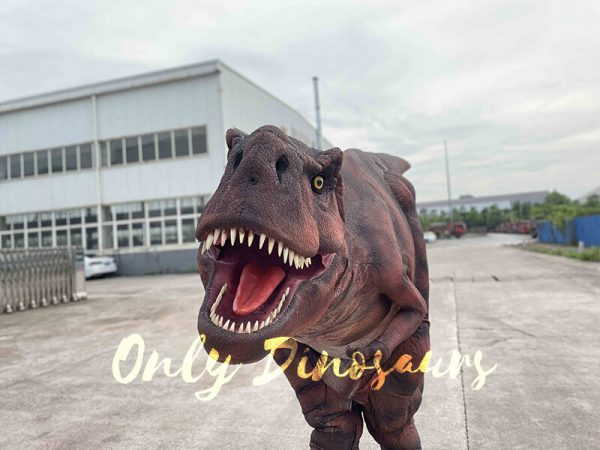 A Roaring Dark Red T-Rex