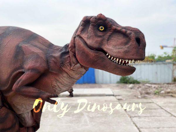 The Head of T-Rex