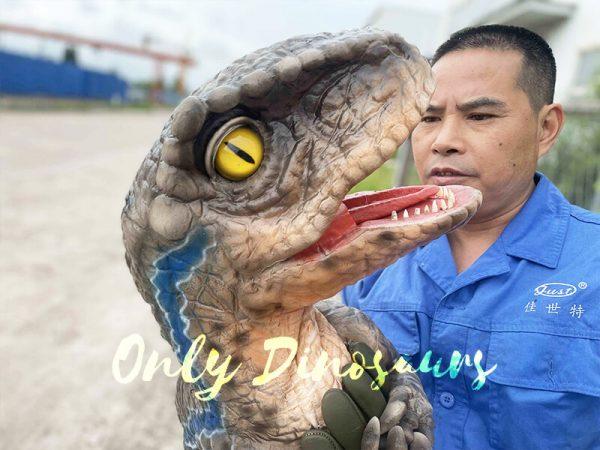 Roar Realistic Raptor Dino