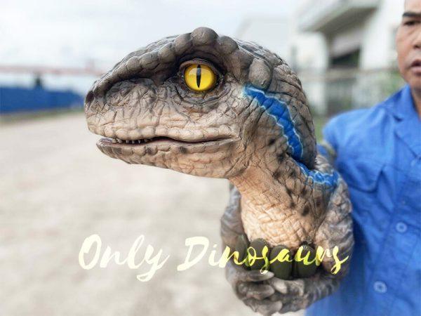 Head of The False Arm Realistic Raptor Dino Puppet
