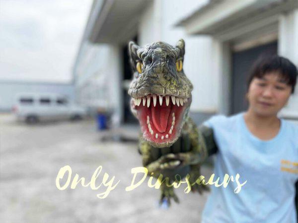 small dinosaur