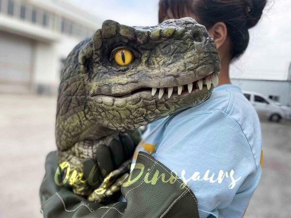 lovely dinosaur puppet