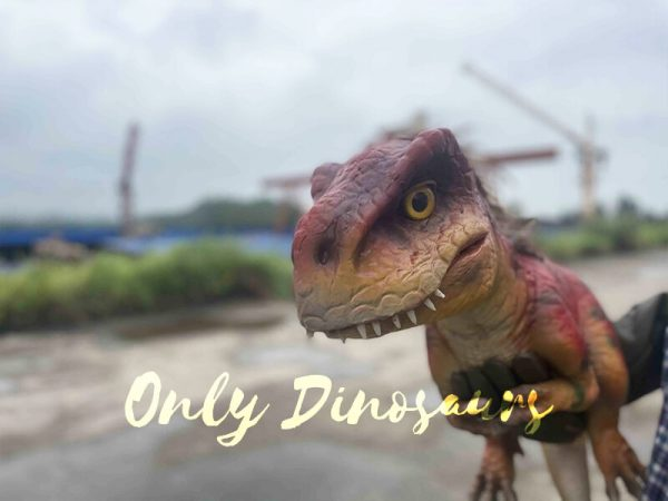 cute baby dinosaur puppet