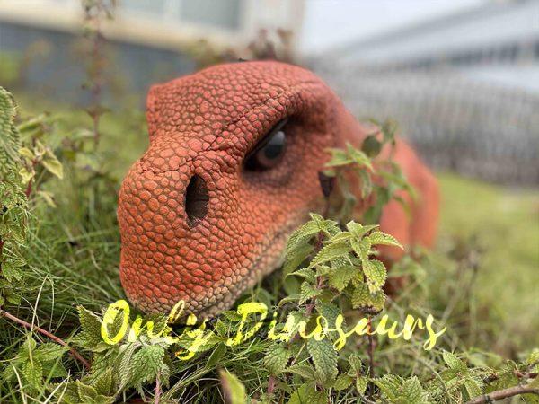 Brachiosaurus Puppet in the Grass