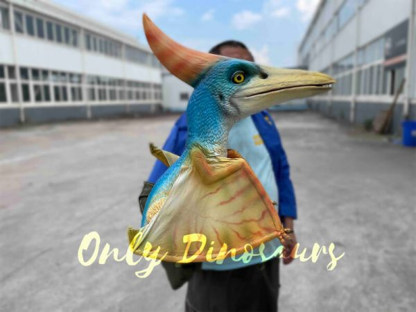 A Colorful Baby Pterosaur