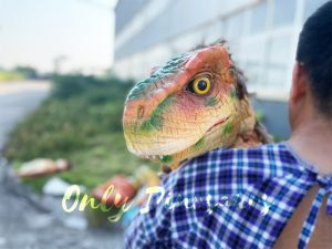 Pleasant Baby T-Rex Dino Puppet for Sale