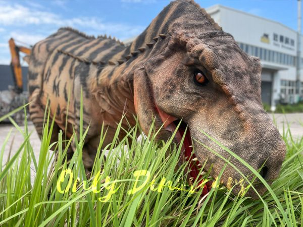 A Brown Giant T-Rex with Black Stripes is Eating Glass