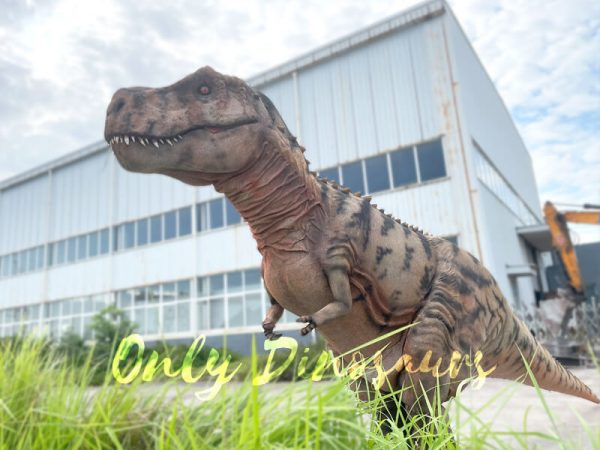 A Brown Giant T-Rex with Black Stripes