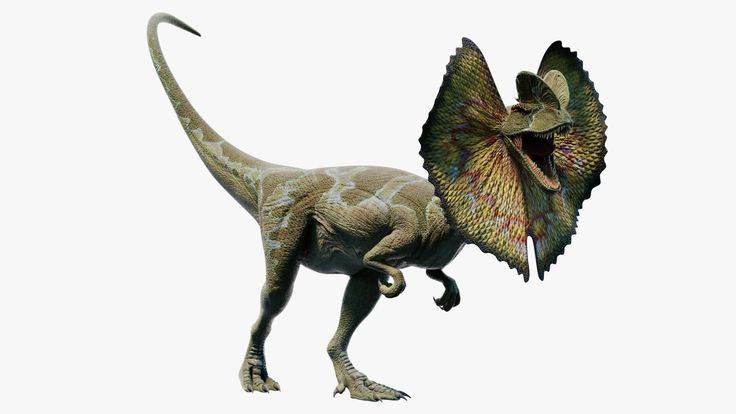 Roaring Dilophosaurus