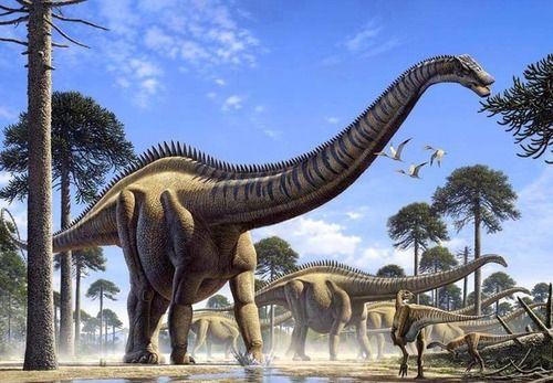Several Apatosaurus with Small Dinosaurs