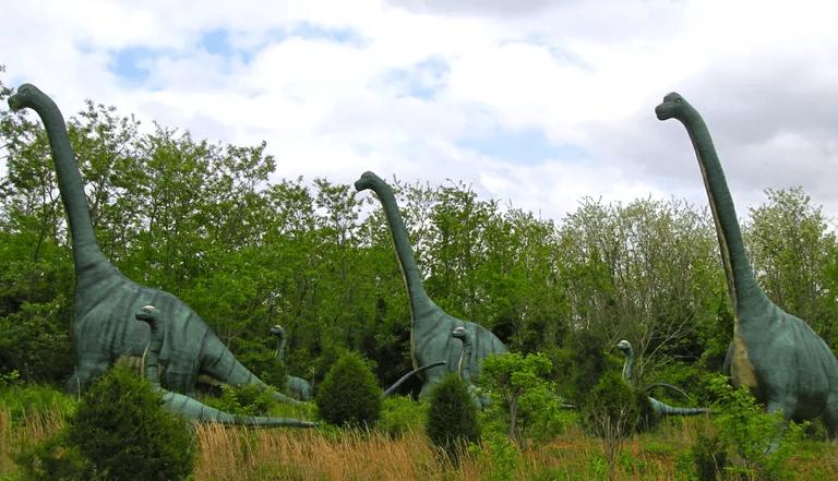 Several Brachiosaurus on the Ground
