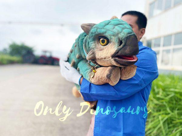 A Blue Baby Ankylosaur in a Human's Arm
