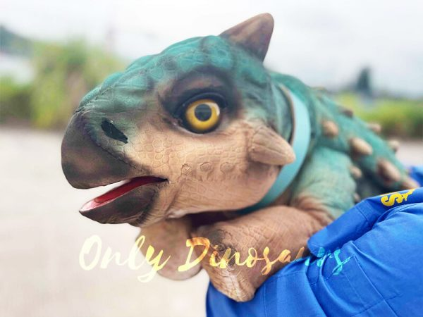 A Blue Baby Ankylosaur in the Human's Arm