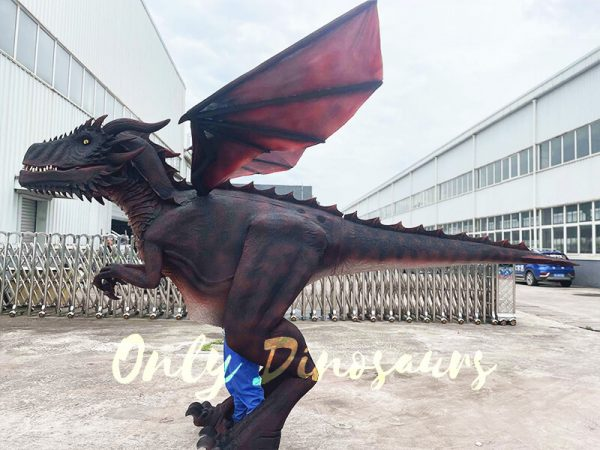 A Dark Red Flying Dragon on the Ground