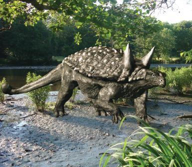 Tianchisaurus on the Ground